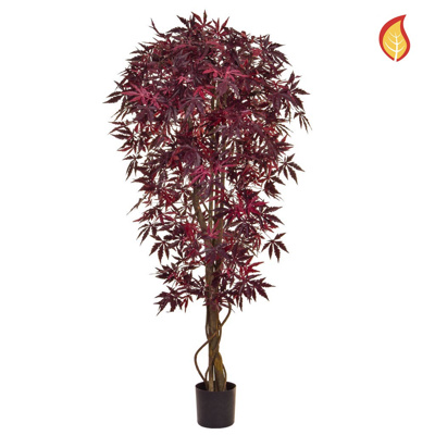 NTT Maple Japanese Burgundy 150cm FR